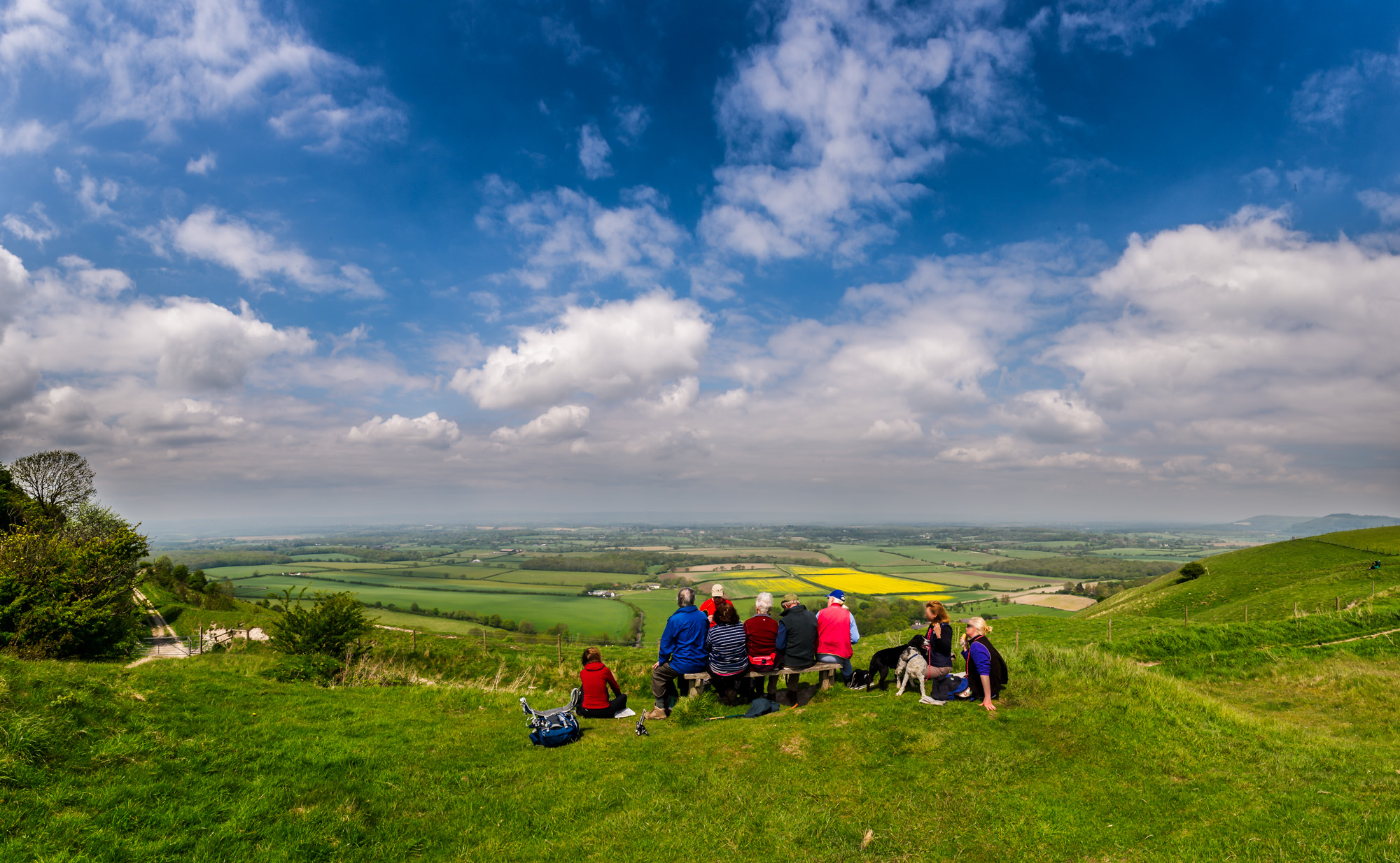 south downs group